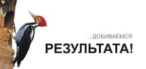 BTL агентства в Санкт-Петербурге